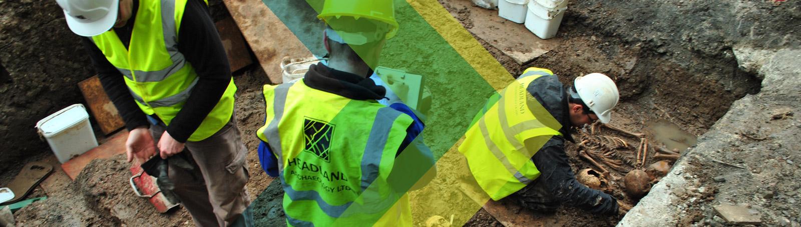 Headland Workers Finding Bones